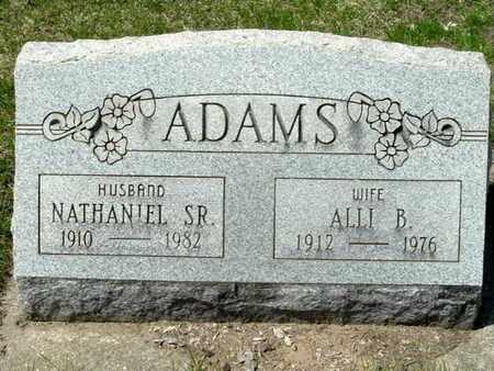 ADAMS, NATHANIEL SR. - Calhoun County, Michigan | NATHANIEL SR. ADAMS - Michigan Gravestone Photos