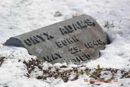 ADAMS, ONYX - Calhoun County, Michigan | ONYX ADAMS - Michigan Gravestone Photos