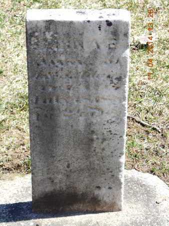 ADAMS, SELINA E. - Calhoun County, Michigan | SELINA E. ADAMS - Michigan Gravestone Photos