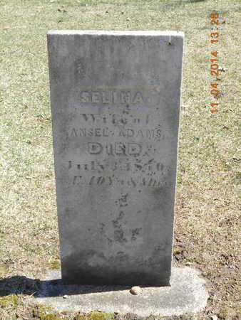 ADAMS, SELINA - Calhoun County, Michigan   SELINA ADAMS - Michigan Gravestone Photos