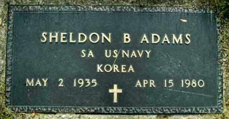 ADAMS, SHELDON B - Calhoun County, Michigan | SHELDON B ADAMS - Michigan Gravestone Photos