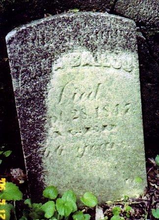 BALLOU, ANNA - Calhoun County, Michigan | ANNA BALLOU - Michigan Gravestone Photos