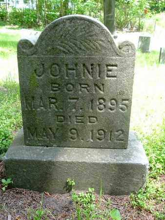 BARRINGTON, JOHNIE - Calhoun County, Michigan | JOHNIE BARRINGTON - Michigan Gravestone Photos