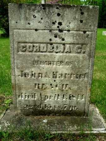 BEACH, CORNELIA G - Calhoun County, Michigan | CORNELIA G BEACH - Michigan Gravestone Photos