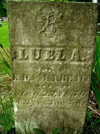 BEACH, LUEL A - Calhoun County, Michigan | LUEL A BEACH - Michigan Gravestone Photos