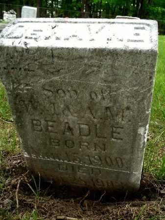 BEADLE, DEWAYNE - Calhoun County, Michigan   DEWAYNE BEADLE - Michigan Gravestone Photos