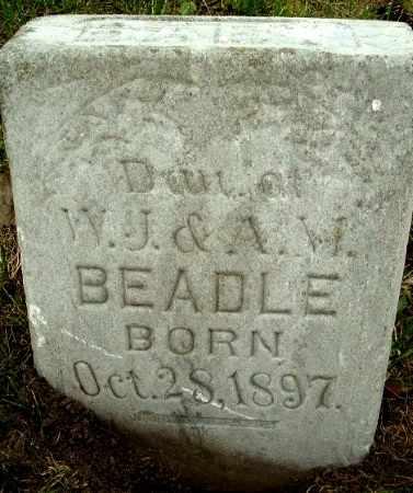 BEADLE, INFANT DAUGHTER - Calhoun County, Michigan | INFANT DAUGHTER BEADLE - Michigan Gravestone Photos