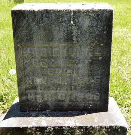 BECKETT, JOSIE IRENE - Calhoun County, Michigan | JOSIE IRENE BECKETT - Michigan Gravestone Photos