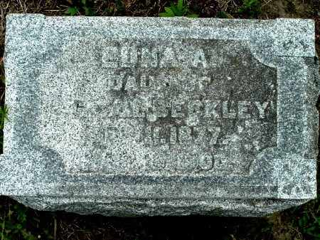 BECKLEY, EDNA A - Calhoun County, Michigan | EDNA A BECKLEY - Michigan Gravestone Photos