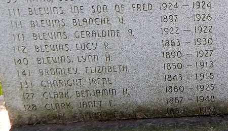 BLEVINS, LUCY R - Calhoun County, Michigan | LUCY R BLEVINS - Michigan Gravestone Photos