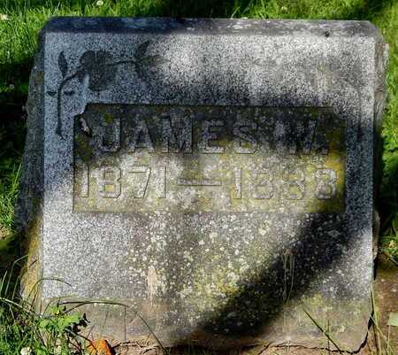 BRADLEY, JAMES W - Calhoun County, Michigan   JAMES W BRADLEY - Michigan Gravestone Photos