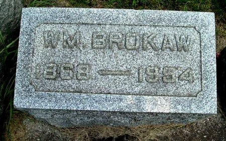 BROKAW, WILLIAM - Calhoun County, Michigan | WILLIAM BROKAW - Michigan Gravestone Photos