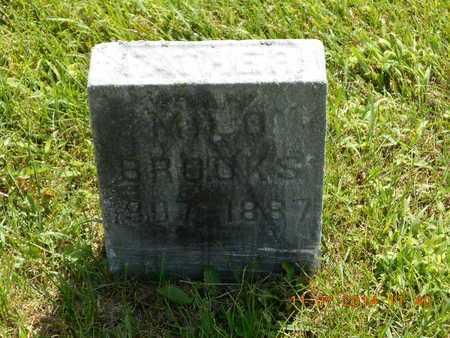BROOKS, MILO - Calhoun County, Michigan | MILO BROOKS - Michigan Gravestone Photos