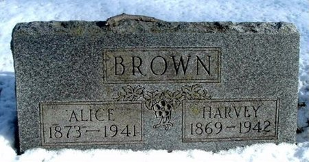 BROWN, ALICE - Calhoun County, Michigan | ALICE BROWN - Michigan Gravestone Photos