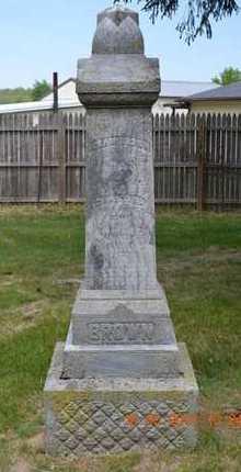 BROWN, CHASTINA - Calhoun County, Michigan | CHASTINA BROWN - Michigan Gravestone Photos