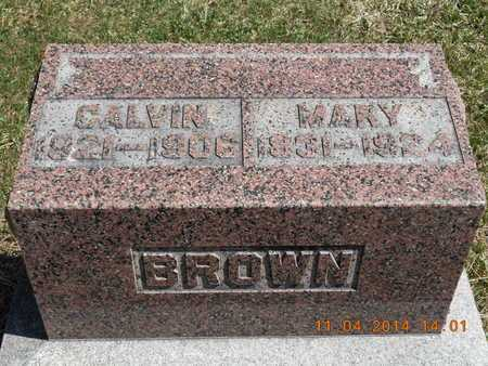 BROWN, MARY - Calhoun County, Michigan | MARY BROWN - Michigan Gravestone Photos