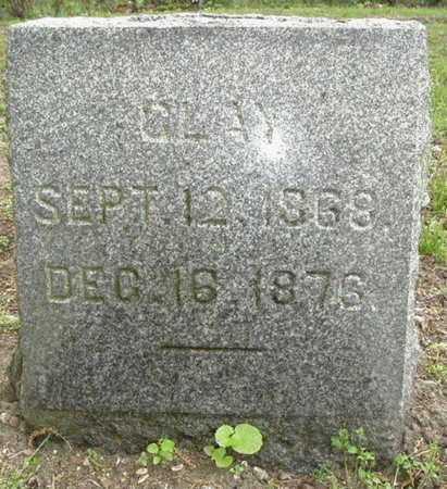 BROWN, CLAY - Calhoun County, Michigan | CLAY BROWN - Michigan Gravestone Photos
