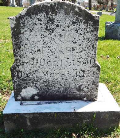 BROWN, CHARLES W - Calhoun County, Michigan | CHARLES W BROWN - Michigan Gravestone Photos