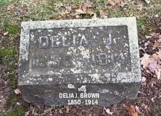 BROWN, DELIA J. - Calhoun County, Michigan | DELIA J. BROWN - Michigan Gravestone Photos