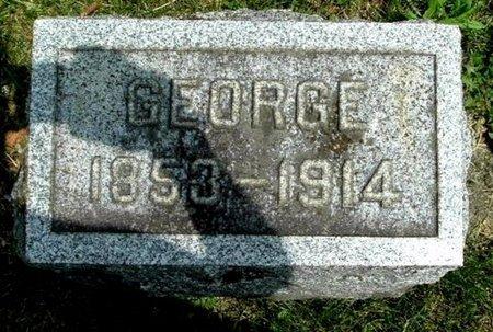 BROWN, GEORGE - Calhoun County, Michigan   GEORGE BROWN - Michigan Gravestone Photos