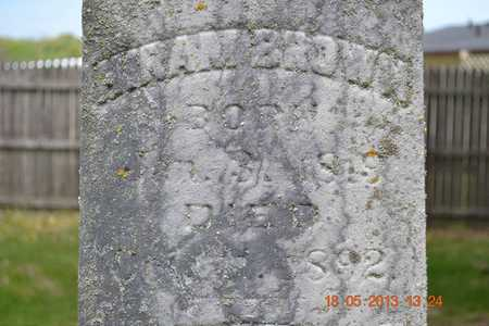 BROWN, HIRAM - Calhoun County, Michigan   HIRAM BROWN - Michigan Gravestone Photos