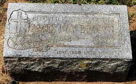 BROWN, JAMES BAY - Calhoun County, Michigan | JAMES BAY BROWN - Michigan Gravestone Photos