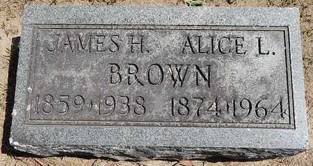 BROWN, JAMES H - Calhoun County, Michigan | JAMES H BROWN - Michigan Gravestone Photos