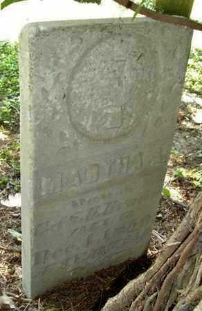 BROWN, MARTHA - Calhoun County, Michigan   MARTHA BROWN - Michigan Gravestone Photos