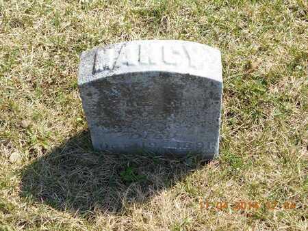 BROWN, NANCY R. - Calhoun County, Michigan | NANCY R. BROWN - Michigan Gravestone Photos