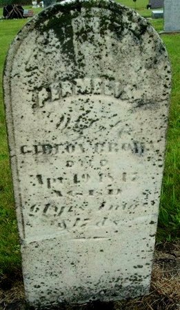 BROWN, PERMELIA - Calhoun County, Michigan | PERMELIA BROWN - Michigan Gravestone Photos
