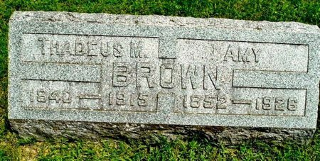 BROWN, THADEUS M - Calhoun County, Michigan | THADEUS M BROWN - Michigan Gravestone Photos