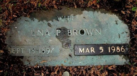BROWN, UNA - Calhoun County, Michigan | UNA BROWN - Michigan Gravestone Photos