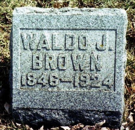 BROWN, WALDO J. - Calhoun County, Michigan   WALDO J. BROWN - Michigan Gravestone Photos