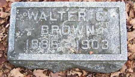 BROWN, WALTER C - Calhoun County, Michigan | WALTER C BROWN - Michigan Gravestone Photos