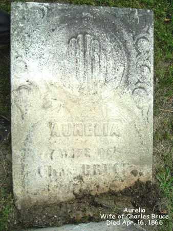 BRUCE, AURELIA - Calhoun County, Michigan | AURELIA BRUCE - Michigan Gravestone Photos