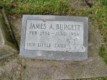 BURGETT, JAMES A. - Calhoun County, Michigan | JAMES A. BURGETT - Michigan Gravestone Photos