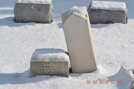 BUSH, DANIEL - Calhoun County, Michigan   DANIEL BUSH - Michigan Gravestone Photos