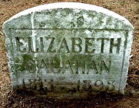 CALAHAN, ELIZABETH - Calhoun County, Michigan | ELIZABETH CALAHAN - Michigan Gravestone Photos