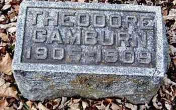CAMBURN, THEODORE - Calhoun County, Michigan | THEODORE CAMBURN - Michigan Gravestone Photos