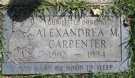 CARPENTER, ALEXANDREA M - Calhoun County, Michigan | ALEXANDREA M CARPENTER - Michigan Gravestone Photos