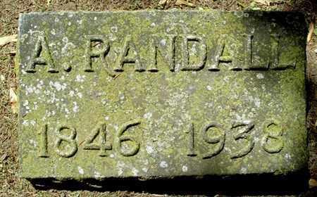 CARPENTER, A. RANDALL - Calhoun County, Michigan | A. RANDALL CARPENTER - Michigan Gravestone Photos
