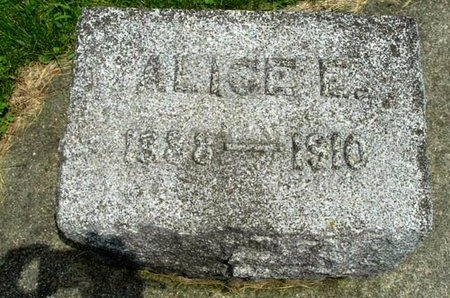 CARPENTER, ALICE E - Calhoun County, Michigan | ALICE E CARPENTER - Michigan Gravestone Photos