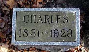 CARPENTER, CHARLES - Calhoun County, Michigan | CHARLES CARPENTER - Michigan Gravestone Photos