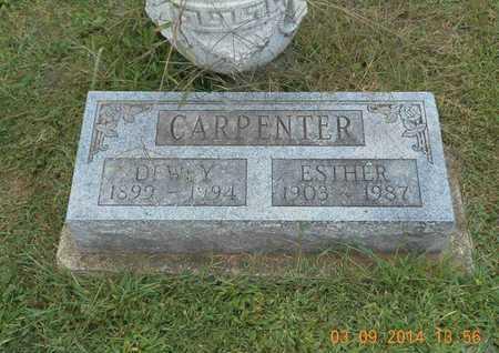CARPENTER, DEWEY - Calhoun County, Michigan | DEWEY CARPENTER - Michigan Gravestone Photos