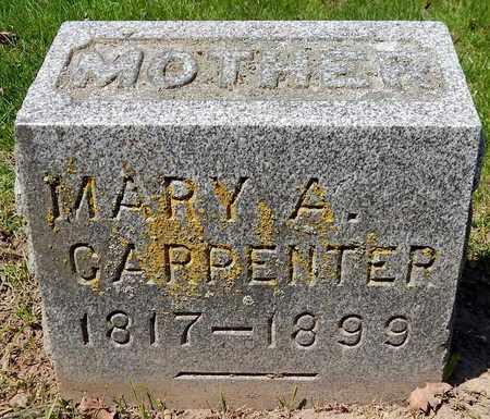 CARPENTER, MARY A - Calhoun County, Michigan   MARY A CARPENTER - Michigan Gravestone Photos