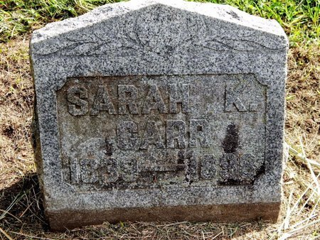 CARR, SARAH - Calhoun County, Michigan | SARAH CARR - Michigan Gravestone Photos