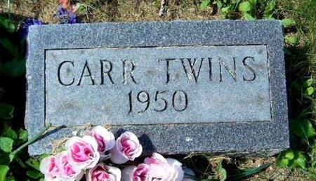 CARR, TWINS - Calhoun County, Michigan   TWINS CARR - Michigan Gravestone Photos