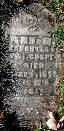 COOPER, ANN M - Calhoun County, Michigan | ANN M COOPER - Michigan Gravestone Photos