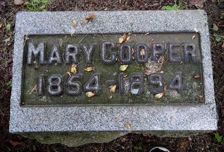 COOPER, MARY - Calhoun County, Michigan | MARY COOPER - Michigan Gravestone Photos