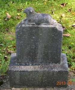 COOPER, VERA L. - Calhoun County, Michigan | VERA L. COOPER - Michigan Gravestone Photos